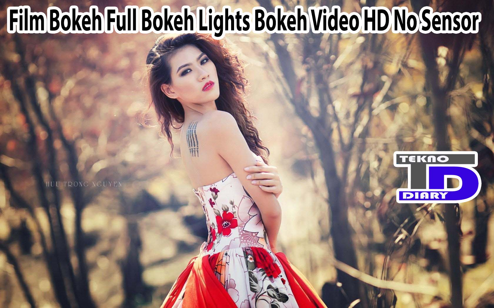 Film Bokeh Full Bokeh Lights Bokeh Video HD No Sensor